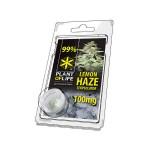 Plant of Life Terpsolator 99% CBD Lemon Haze 100mg