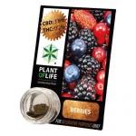 Plant Of Life CBD 3.8% Berries