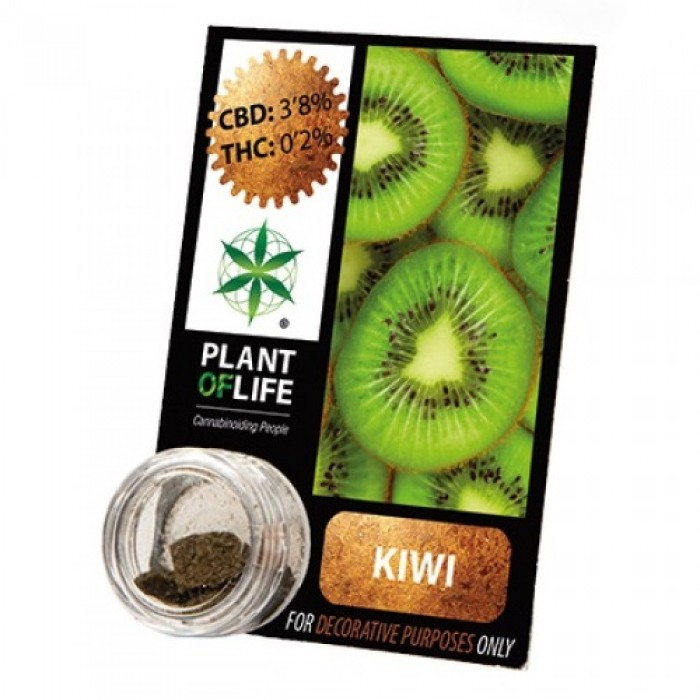 Plant Of Life CBD 3.8% Kiwi