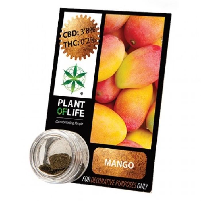 Plant Of Life CBD 3.8% Mango 1gr