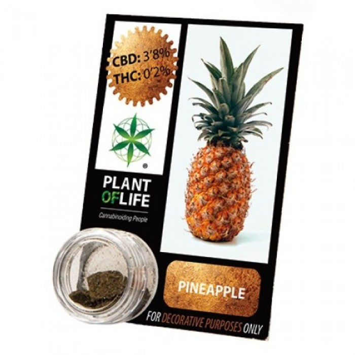 Plant Of Life CBD 3.8% Pineapple 1gr