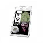 Plant Of Life CBD Solid 10% Gorilla Glue