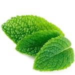 Inawera Mint flavor 10ml